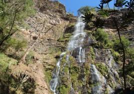 Cachoeira Vereda dos Porcos
