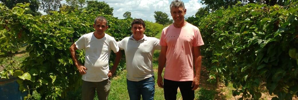 Secretaria de Agricultura e a Secretaria de Desenvolvimento Econômico busca alternativas para aumentar a renda dos nossos Agricultores Familiares.